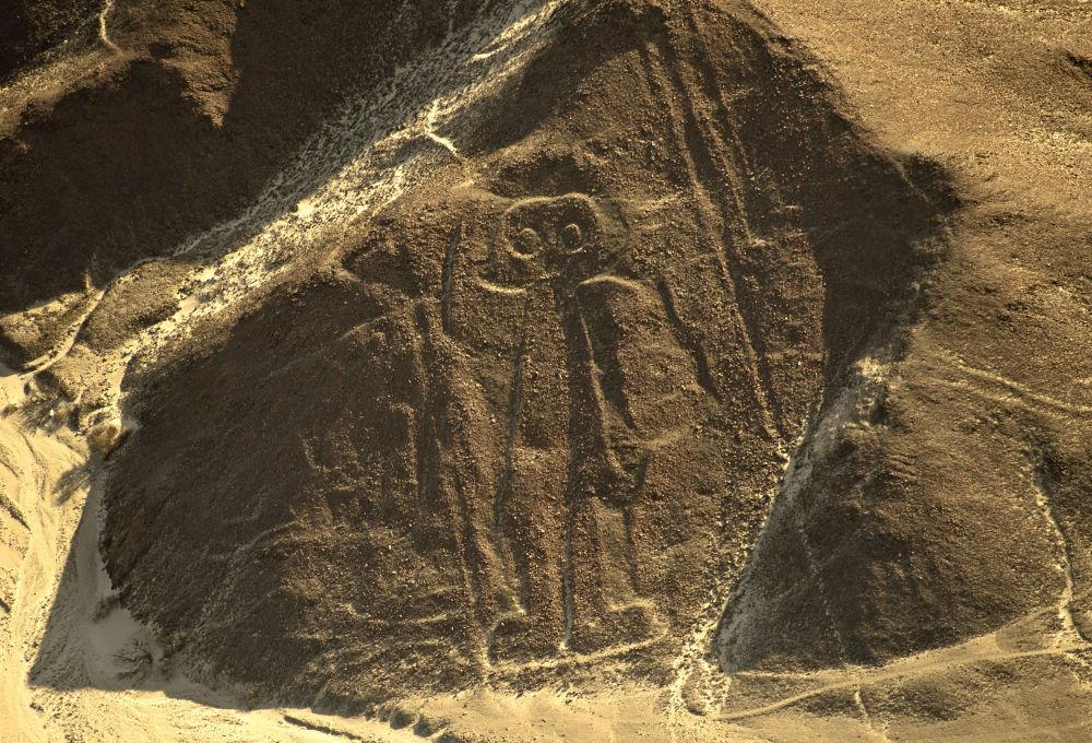 Fragment rysunków z Nazca