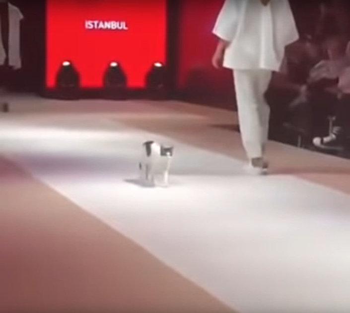 Pokaz mody Esmod International Fashion Show w Stambule