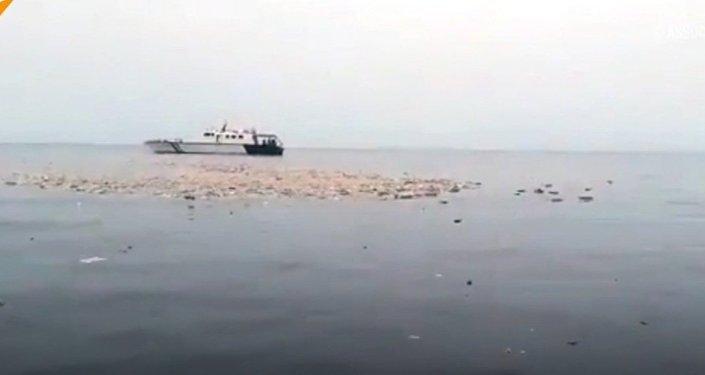 Katastrofa lotnicza w Indonezji