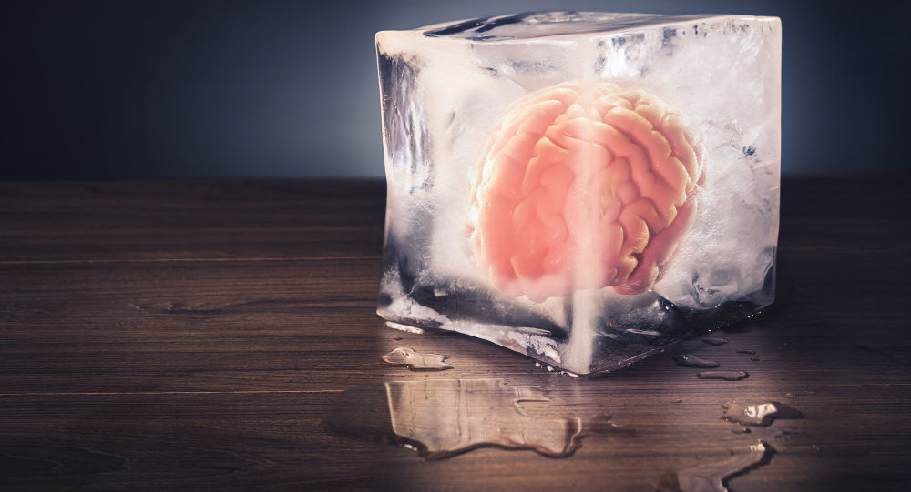 """Zamrożony"" mózg"