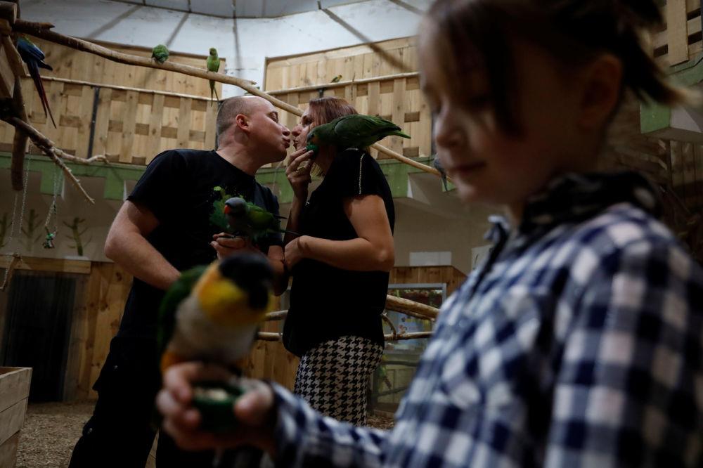Rodzina w papugarni w Katowicach