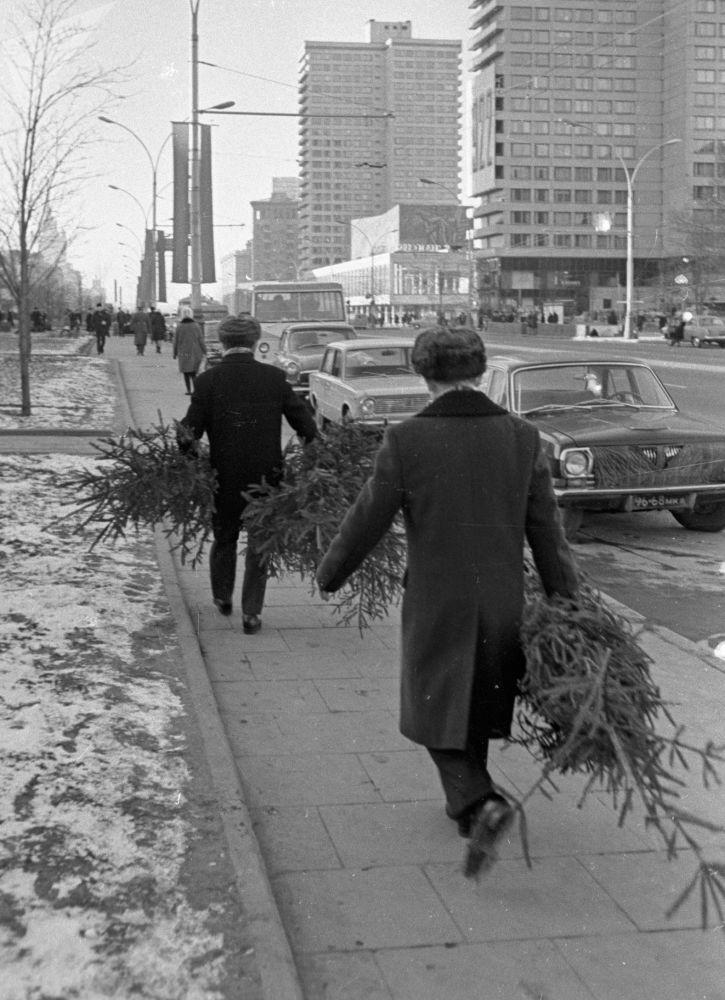 Moskwiane niosą do domu choinki, 1978 rok