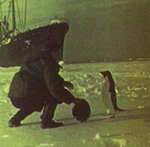 63 lata temu na Antarktydzie wylądowała radziecka wyprawa