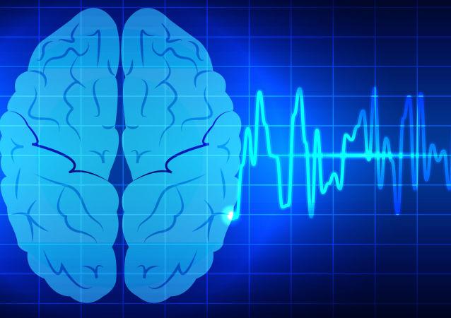 Komputerowy model mózgu