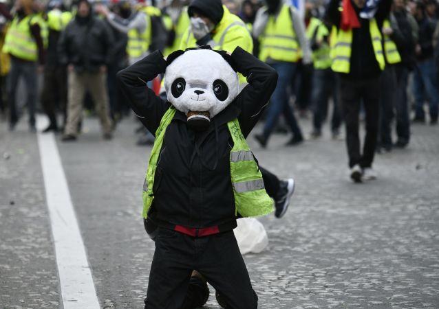 Uczestnik akcji protestu żółtych kamizelek w Paryżu