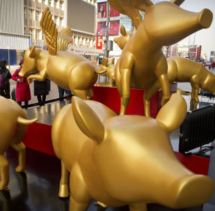 Posągi złotych świnek z okazji obchodów Chińskiego Nowego Roku w Pekinie