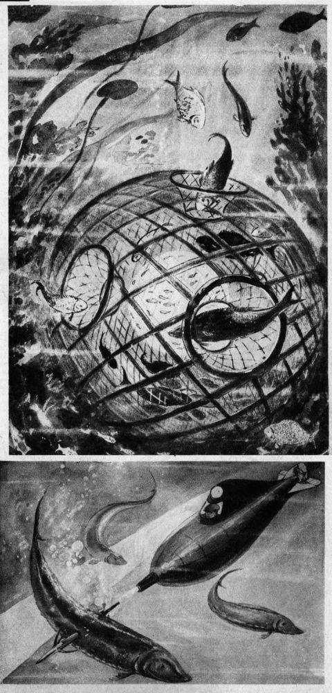 Przemysł rybny przyszłości, 1939 rok