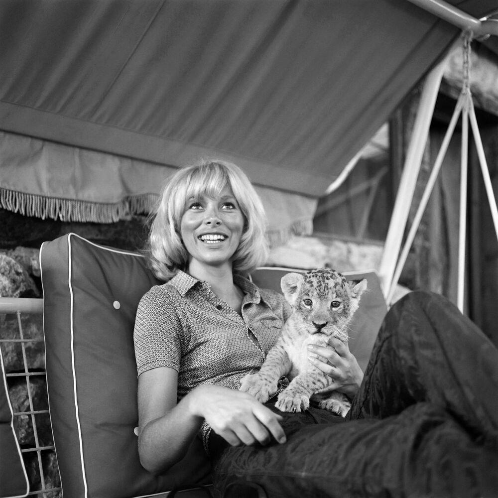Francuska aktorka Mireille Darc z tygrysem