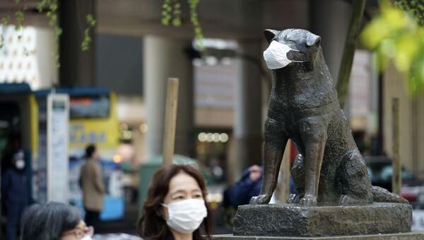 Pomnik psa Hatiko, Tokio, Japonia - Sputnik Polska