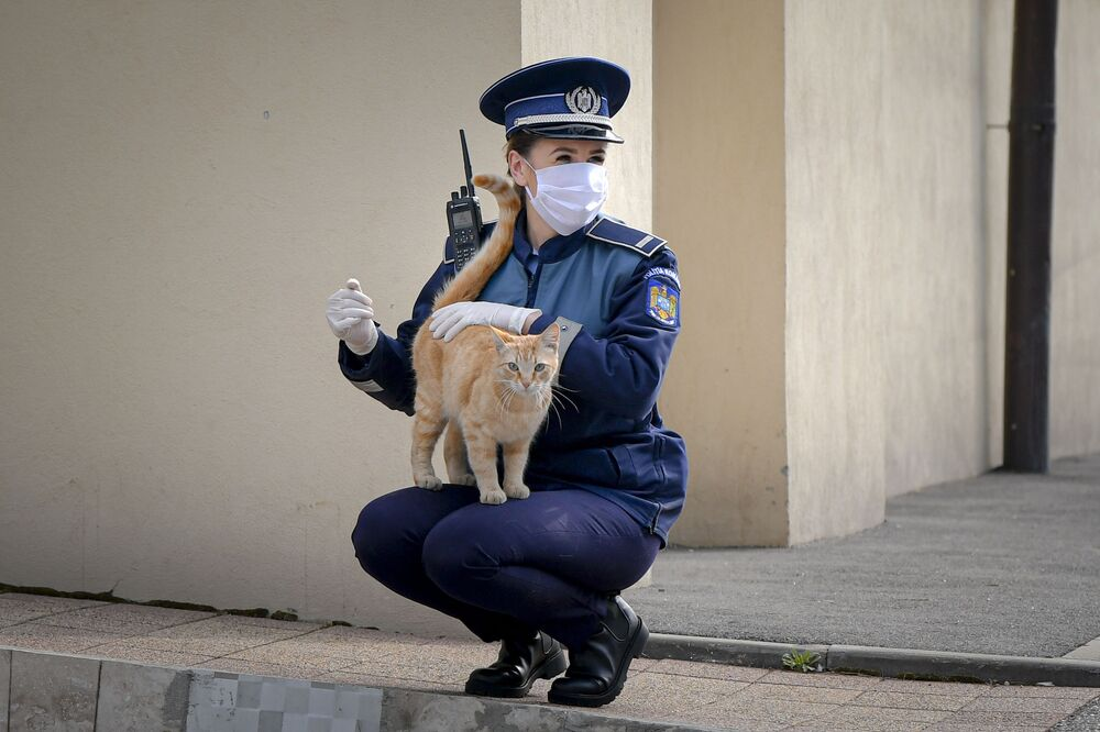 Policjantka bawi się z kotem przed kościołem w Niedzielę Palmową w Bukareszcie w Rumunii