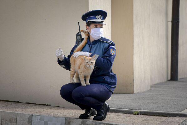 Policjantka bawi się z kotem przed kościołem w Niedzielę Palmową w Bukareszcie w Rumunii - Sputnik Polska