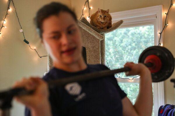Kot obserwuje trening swojej pani w Princeton w stanie New Jersey - Sputnik Polska