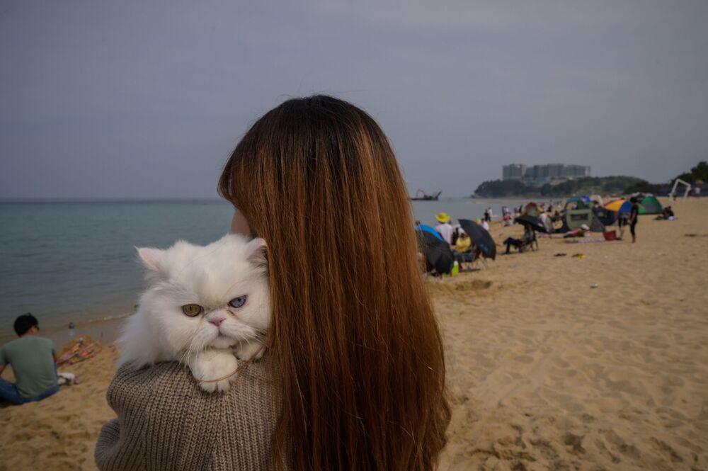 Kot ze swoją właścicielką na plaży w Korei Południowej