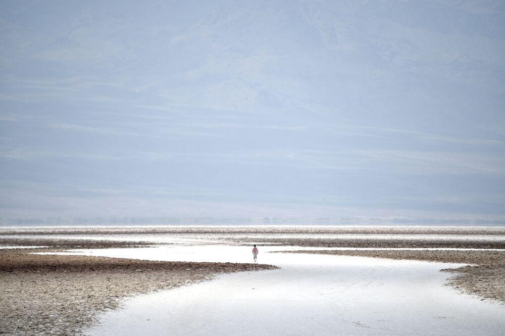 """Słone gleby w basenie Badwater, najniższego punkcie Ameryki Północnej – 279 stóp (85 m) poniżej poziomu morza w parku narodowym """"Dolina Śmierci""""."""