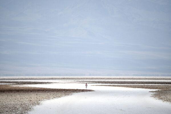 """Słone gleby w basenie Badwater, najniższego punkcie Ameryki Północnej – 279 stóp (85 m) poniżej poziomu morza w parku narodowym """"Dolina Śmierci"""" - Sputnik Polska"""