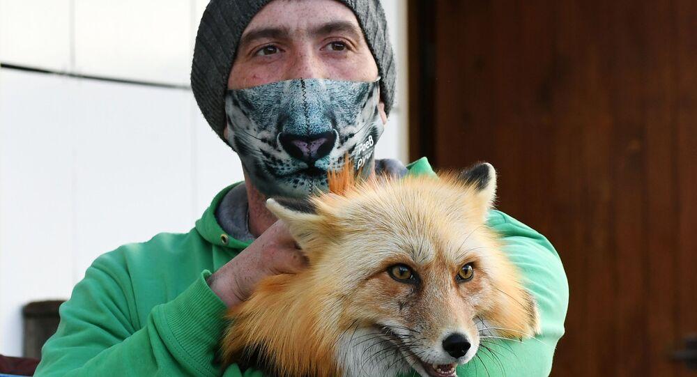 Mężczyzna w masce trzyma lisa