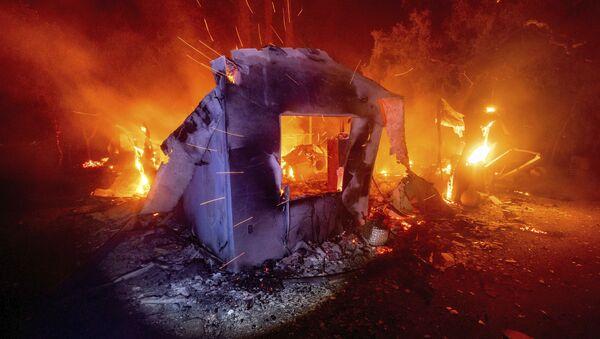 Pożary lasów w Kalifornii - Sputnik Polska