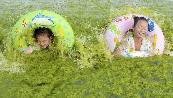 Dzieci kąpią się w wodzie pełnej wodorostów - Sputnik Polska