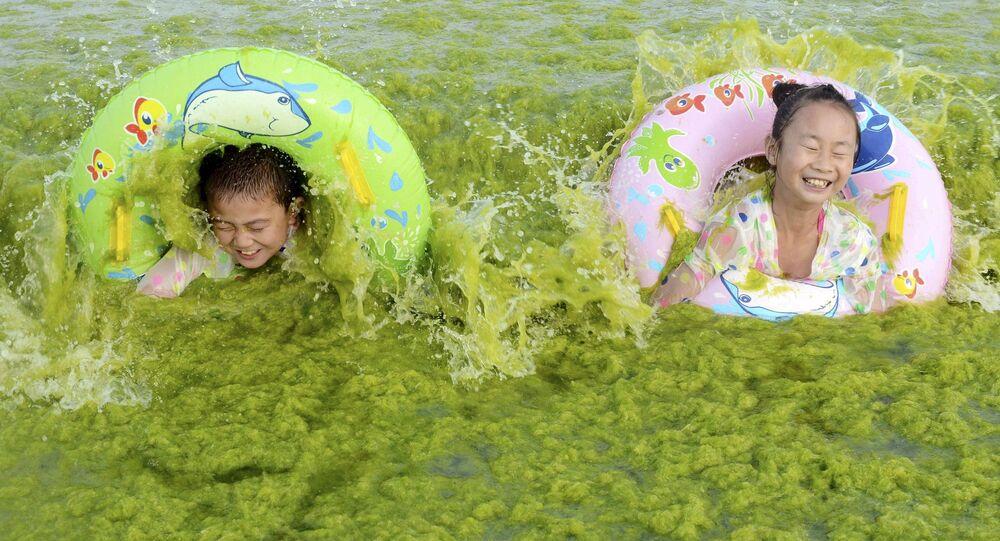 Dzieci kąpią się w wodzie pełnej wodorostów