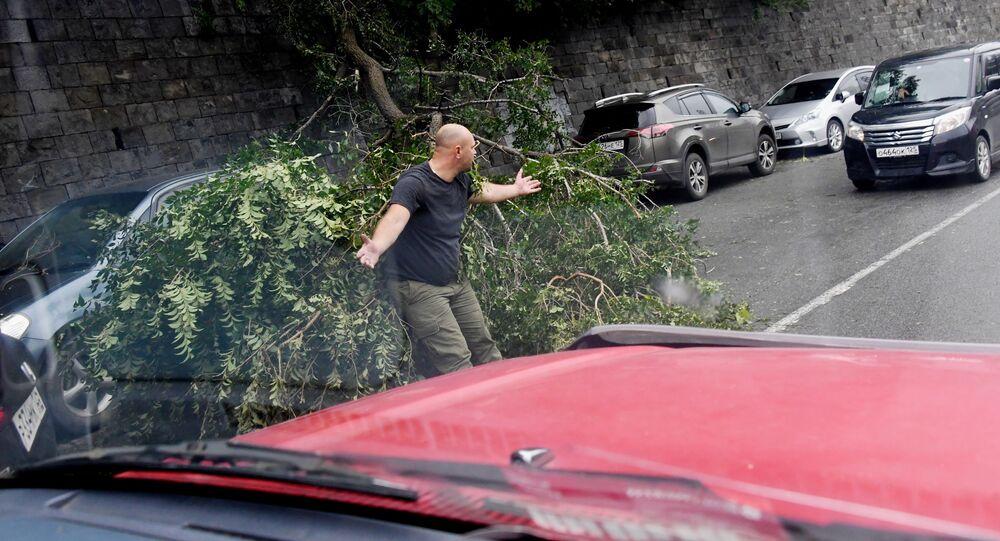 Powalone drzewa na nasypie Korabelnaja po tajfunie Maysak we Władywostoku