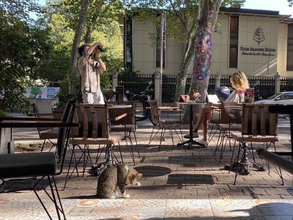 Kawiarnia w Stambule - Sputnik Polska