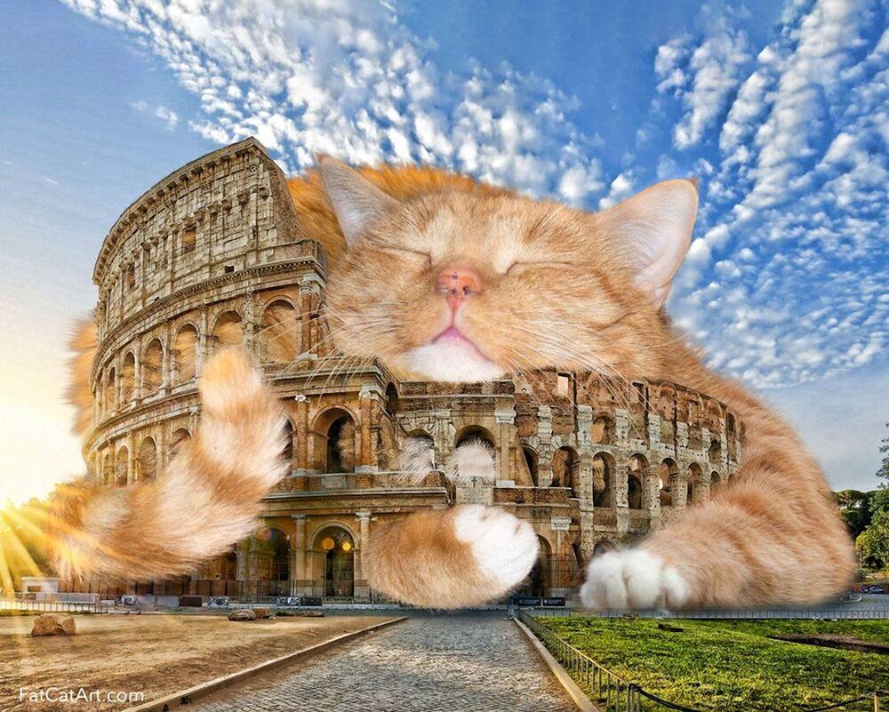 Koloseum i kot Zaratustra w projekcie Svetlany Petrovej Fat Cat Art