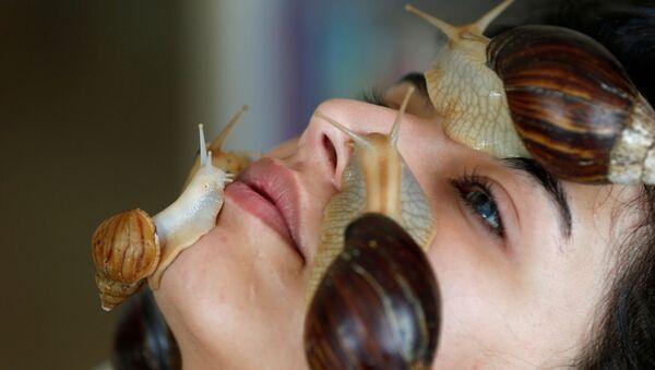 Zabieg kosmetyczny z gigantycznymi afrykańskimi ślimakami w salonie kosmetycznym w Ammanie - Sputnik Polska