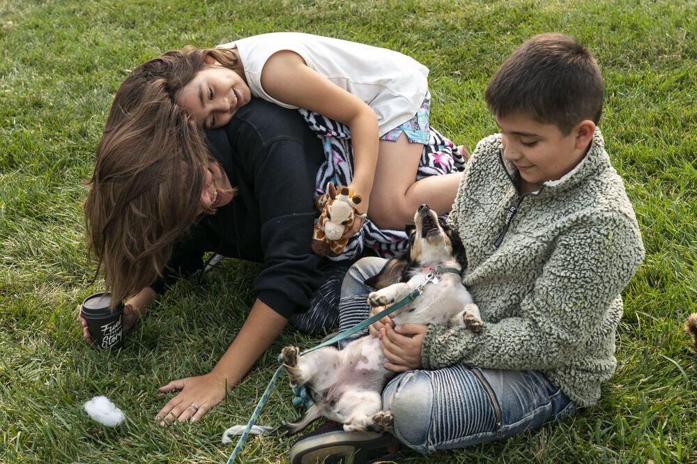 Dzieci grają z psem terapeutycznym