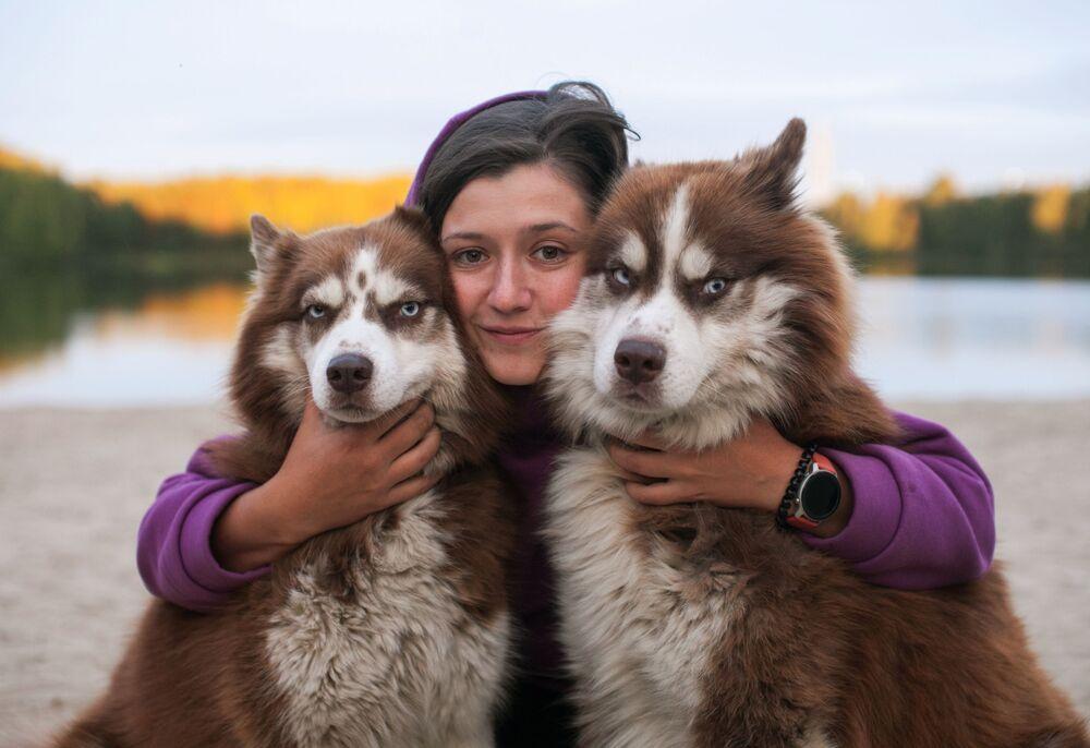 Psy rasy husky
