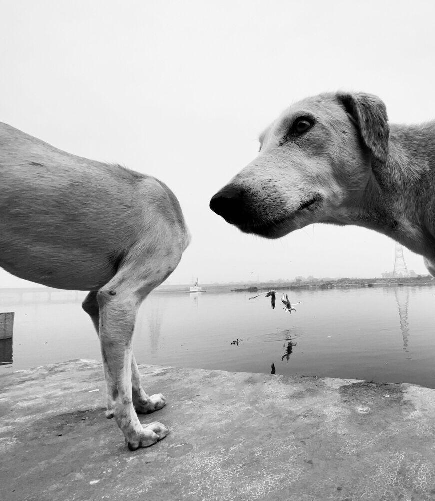 """ohhhhhhh"" Autor: Dimpy Bhalotia"