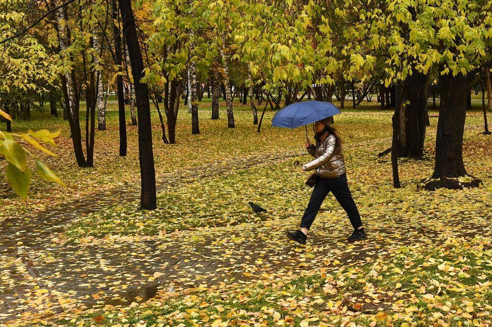 Jesień w Nowosybirsku