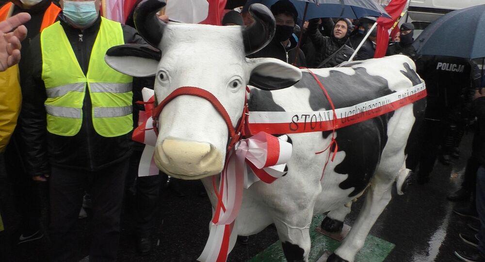 Protesty rolników w Warszawie 13 października 2020 roku