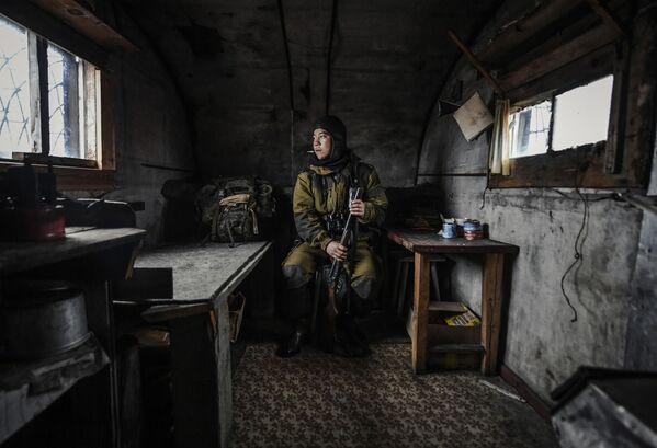 """Portret """"Wyspa Wrangla"""". Autor: Jurij Smitiuk, Rosja - Sputnik Polska"""