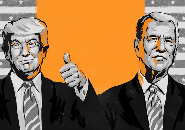 Wybory prezydenckie 2020 w USA