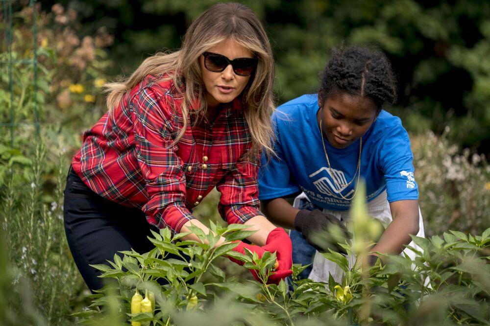 Melania Trump zbiera plony w ogrodzie warzywnym przed Białym Domem, 2017