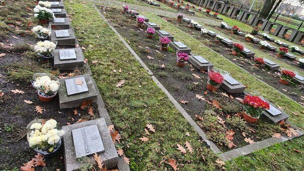 """Akcja fundacji """"Marysieńka"""" na cmentarzu wojennym Armii Radzieckiej w Legnicy - Sputnik Polska"""