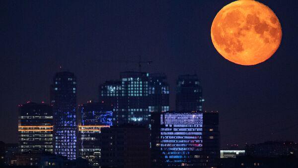 Księżyc nad Moskwą - Sputnik Polska