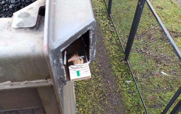 Celnicy z Kaliningradu razem ze służbą graniczną znaleźli ukryte przed kontrolą wyroby tytoniowe - Sputnik Polska