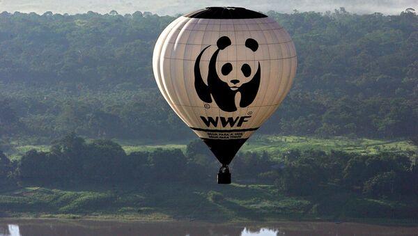 Balon z logiem Światowego Funduszu na rzecz Przyrody (WWF). - Sputnik Polska