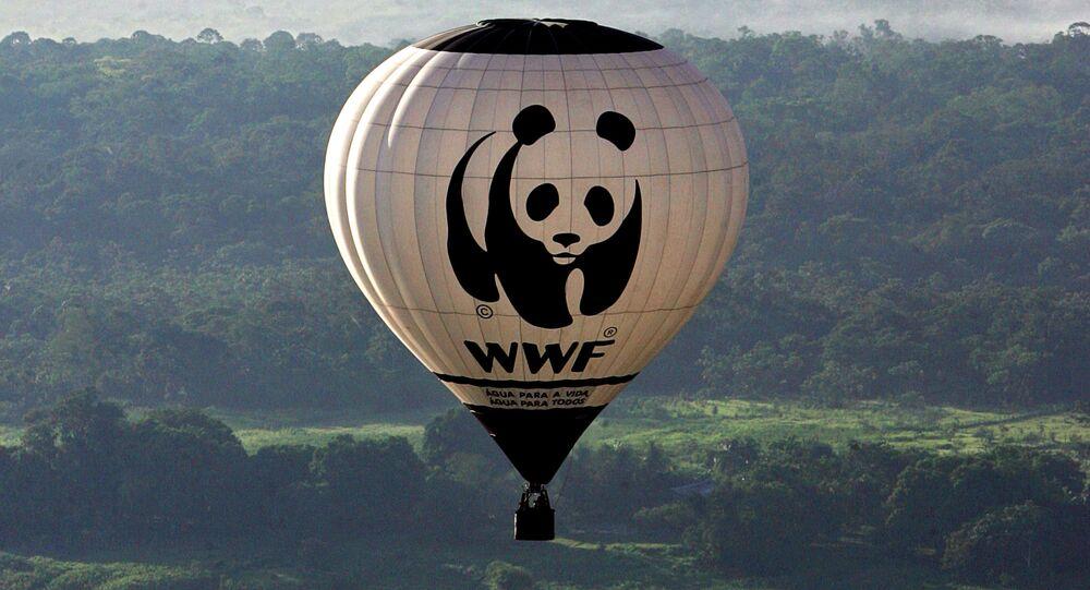 Balon z logiem Światowego Funduszu na rzecz Przyrody (WWF).