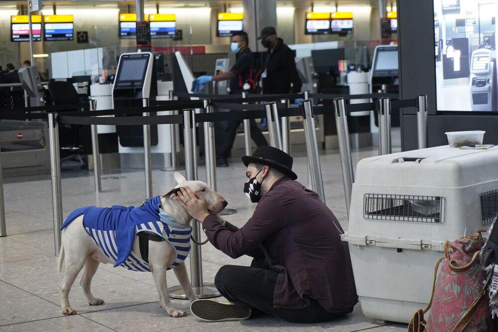 Turysta z psem na lotnisku Heathrow