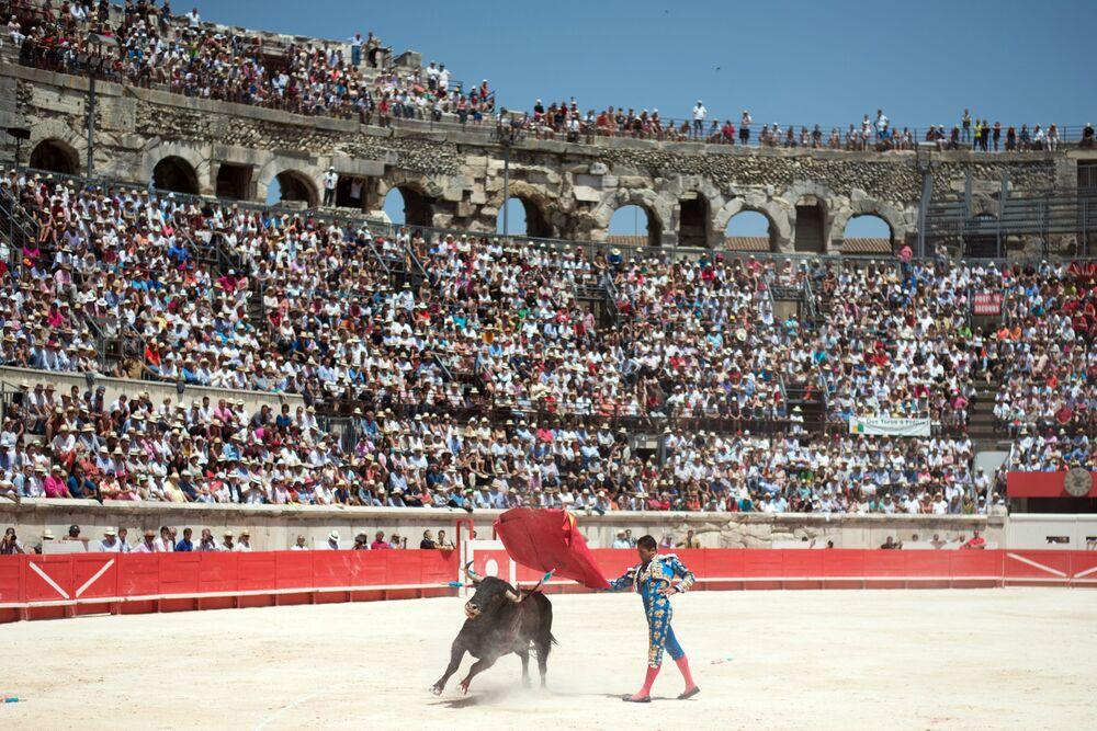 Hiszpański matador z bykiem