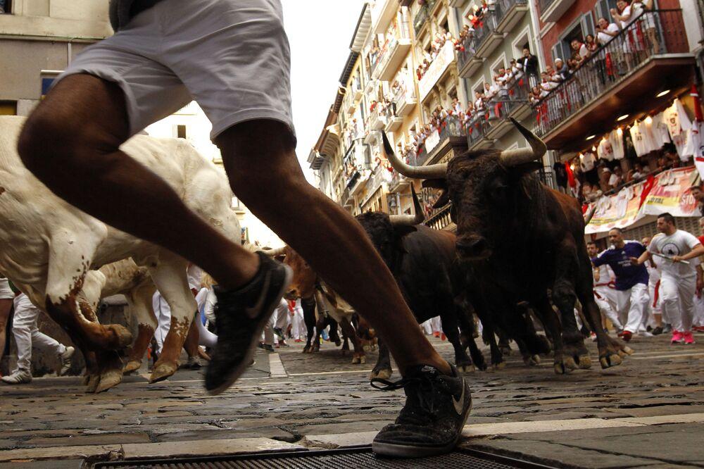 """Encierro, czyli """"bieg byków"""""""