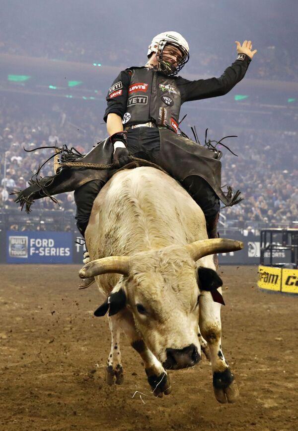 Mistrzostwa Professional Bull Riders w Nowym Jorku - Sputnik Polska