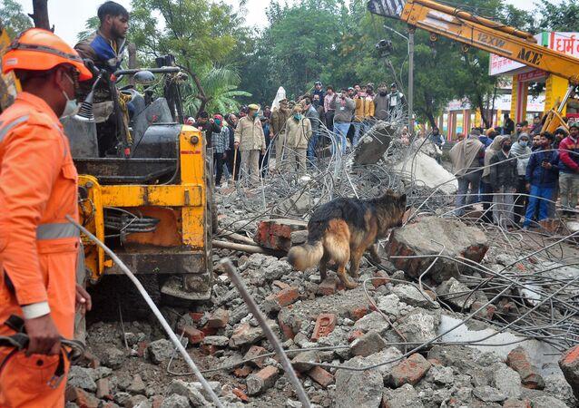 Pies tropiący w miejscu zawalenia się dachu krematorium w indyjskim mieście Ghaziabad.