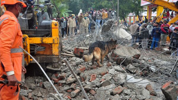 Pies tropiący w miejscu zawalenia się dachu krematorium w indyjskim mieście Ghaziabad - Sputnik Polska