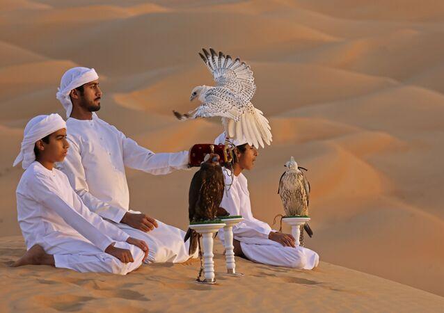 Trening z sokołem na pustyni Liwa w Zjednoczonych Emiratach Arabskich
