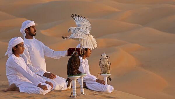 Trening z sokołem na pustyni Liwa w Zjednoczonych Emiratach Arabskich - Sputnik Polska