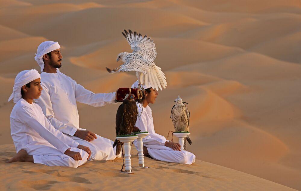 Trening z sokołami na pustyni Liwa w Zjednoczonych Emiratach Arabskich