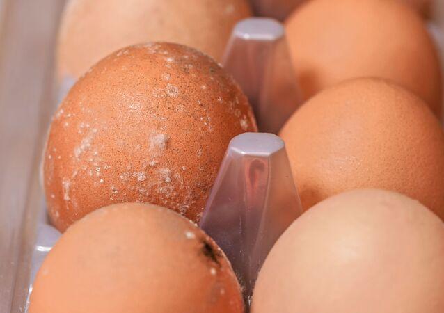 Zepsute jaja.